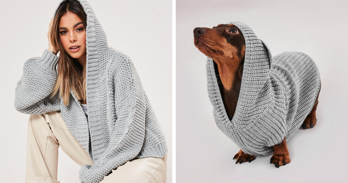 Esta marca de roupas começou a vender suéteres que combinam para cães e seus donos