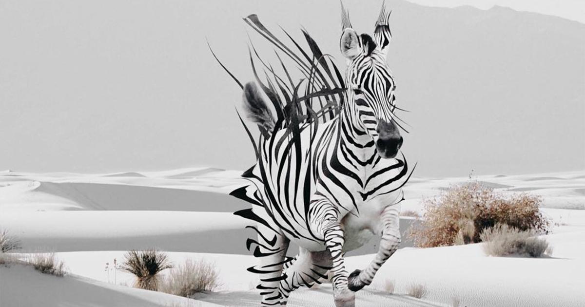 Artista transforma animais em imagens surreais usando o Photoshop (50 imagens)