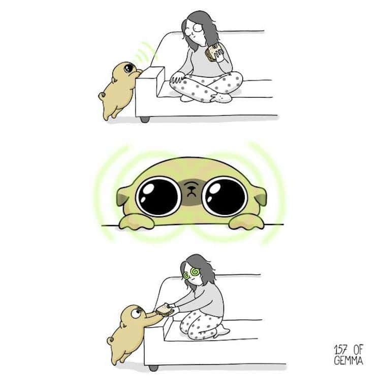 23 Ilustrações Da Adorável Realidade De Viver Com Um Cachorrinho