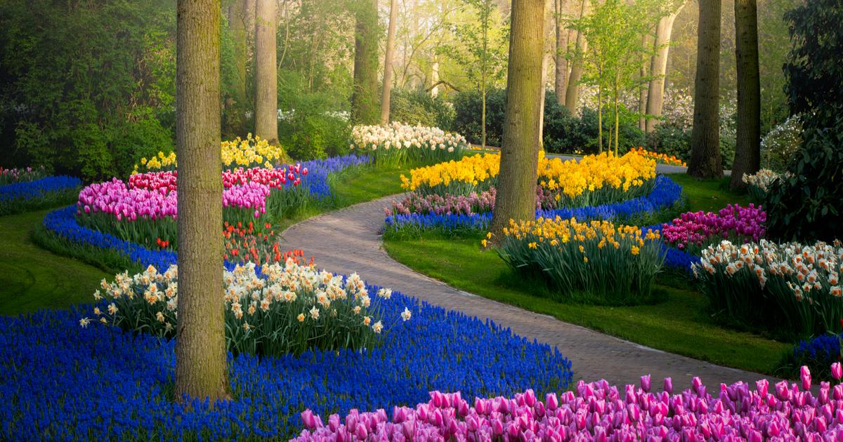 31 Fotografias Do Jardim De Flores Mais Bonito do Mundo Sem Turistas