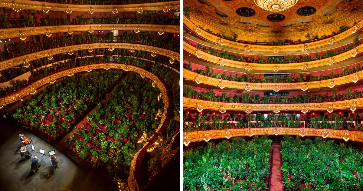Ópera De Barcelona Reabre Com Performance Diante De Uma Multidão Majestosa De 2.292 Plantas