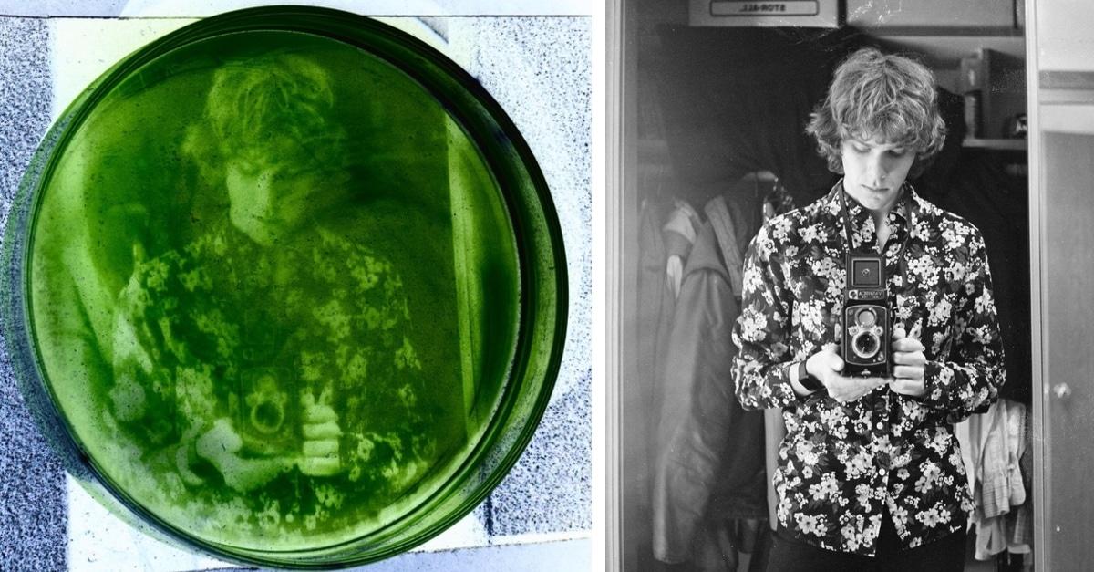 Estudante De Pós-Graduação Desenvolve Método Exclusivo De Revelação De Fotos Em Algas