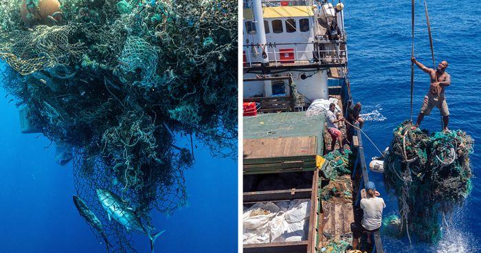 Expedição Havaiana De 48 Dias Bate Recorde De Maior Remoção De Plástico Do Oceano Pacífico