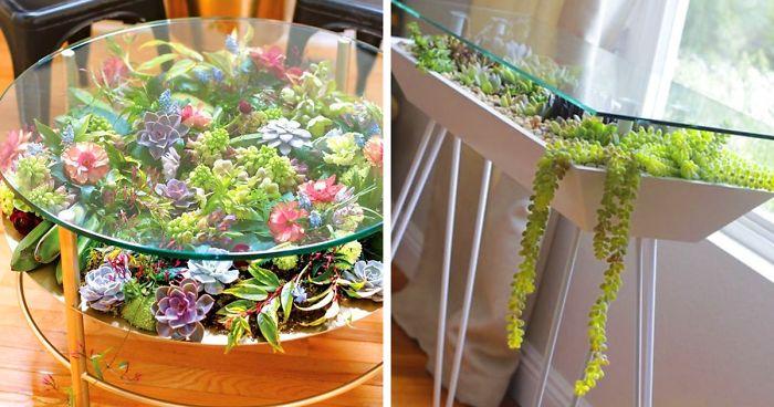 31 Mesas Transformadas Em Jardins Coloridos E Suculentos