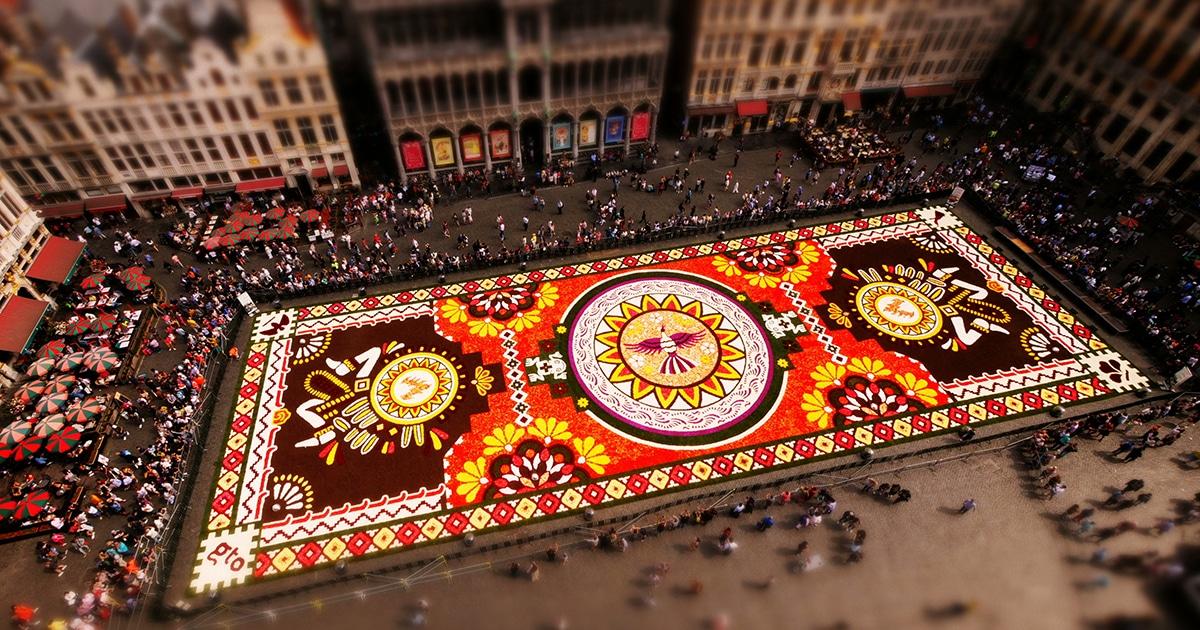 Cineasta Captura Criação Incrível De Enorme Tapete De Flores Em Bruxelas
