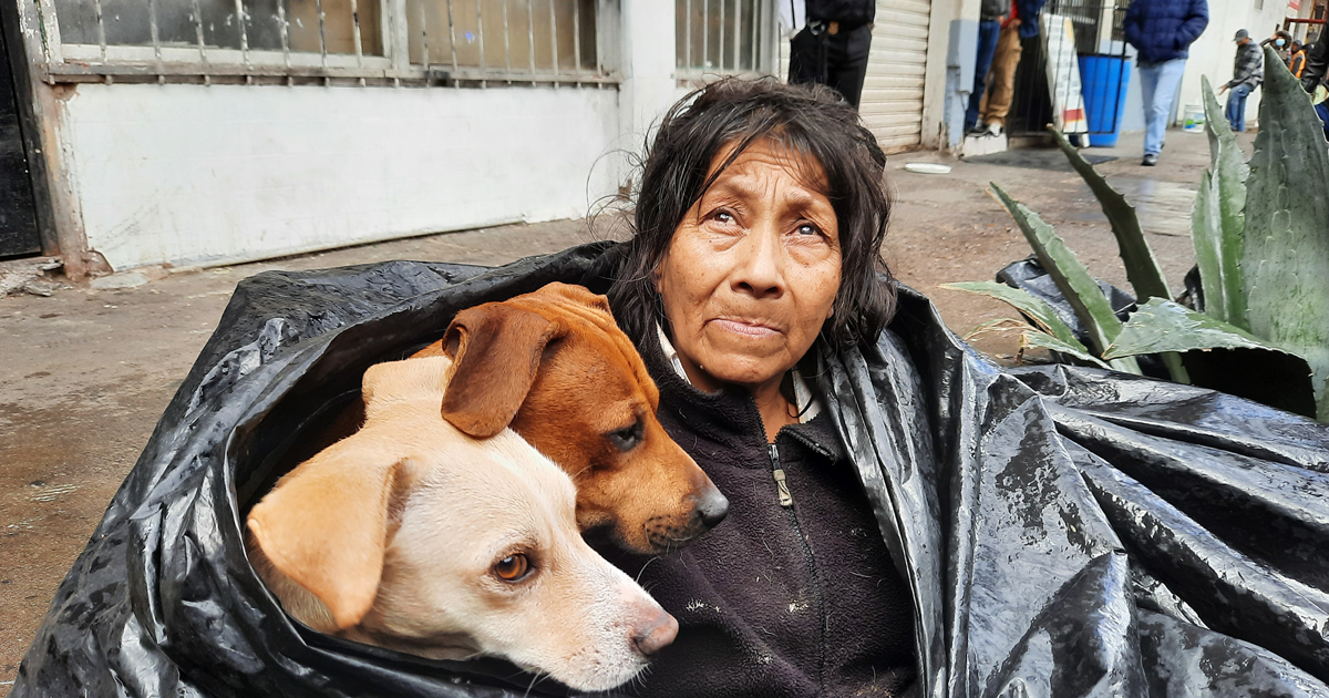 Mulher Sem Teto Se Recusa A Ir Para Abrigo Porque Não Permitem Animais De Estimação