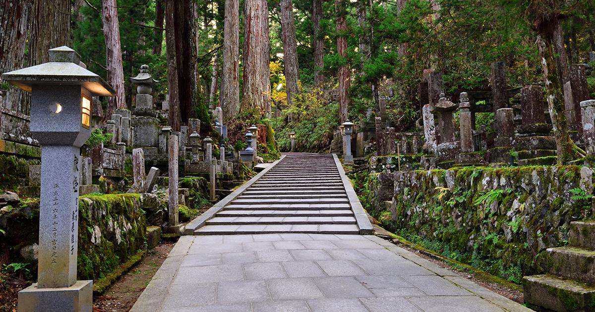 A Tradição Dos Enterros Em Árvores Do Japão